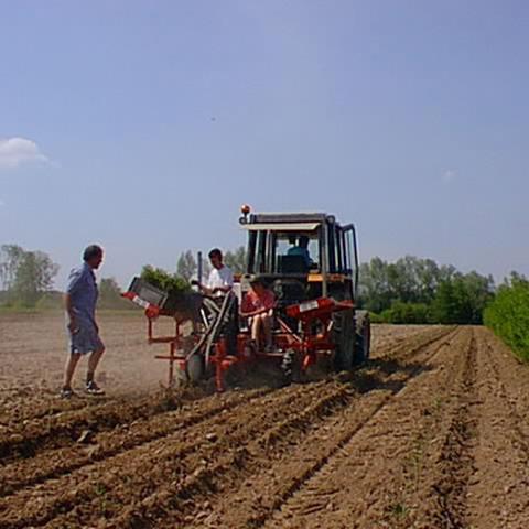 Pépinières Doussin - Cinq-Mars-la-Pile - Production de végétaux