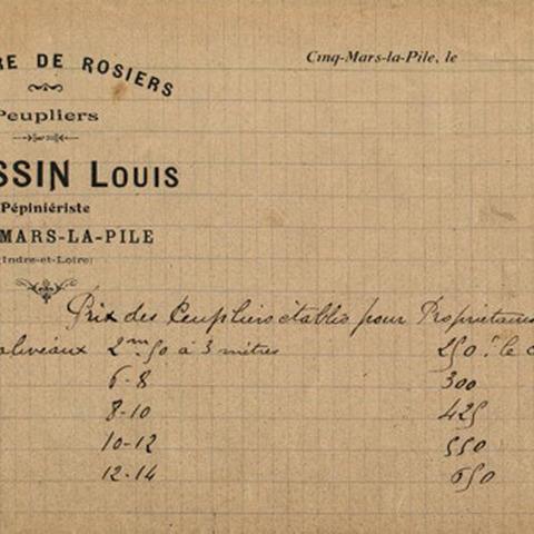 Pépinières Doussin - Cinq-Mars-la-Pile - Un siècle d'expérience - Un siècle de savoir-faire comme pépiniériste